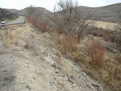 Example of an existing highway embankment slope. Photo courtesy of Dave Perrotti, URS Corporation.