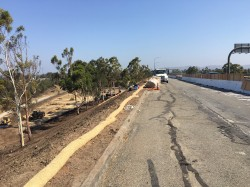 Nicholson grouts embankments for CalTrans in Orange County, California