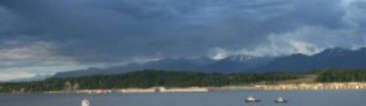 Study: Port of Alaska Sheet Piles Have Design Flaws
