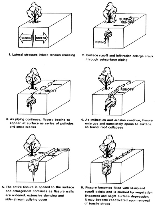 Figure 1: Stages in Fissure Development (from Larson and Pewe, 1986)