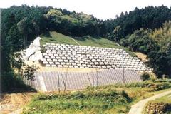 Anchored landslide in Japan