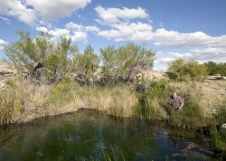 BYU geology professor Steve Nelson at Ash Meadows